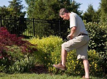 gardener in Brisbane